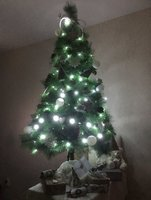 fir-tree-6.jpg