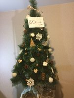 fir-tree-7.jpg