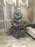 fir-tree-12.jpg
