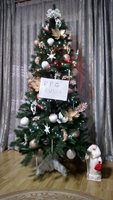 fir-tree-13.jpg