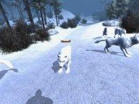 Eiswolf_2.jpg